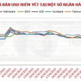 Chiều 5/5: Tỷ giá USD/VND chính thức tăng kịch trần