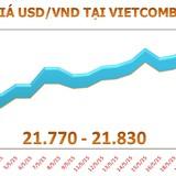 Sáng 22/5: Tỷ giá USD/VND có dấu hiệu hạ nhiệt