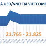 Sáng 11/6: Tỷ giá USD/VND giảm phiên thứ hai liên tiếp