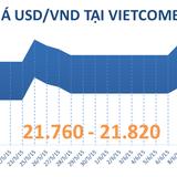 Sáng 12/6: Tỷ giá USD/VND biến động trong biên độ hẹp