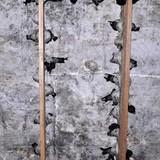 Xây nhà bạc tỷ nuôi chim yến ở Quảng Ngãi