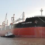 Phát triển vận tải biển: Mấu chốt là hiện đại hóa đội tàu