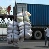 Nâng giá sàn xuất khẩu gạo