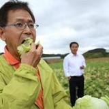 """""""Đại gia"""" Nhật giúp người nông dân Việt bớt khổ"""