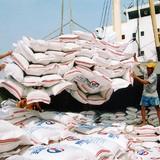 """Xuất khẩu gạo bất cập từ cách """"quản"""""""