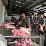 Người chăn nuôi trước thách thức sống còn