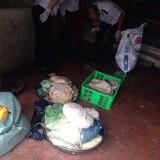 Hà Nội: Hãi hùng cơ sở sản xuất nem chua bằng thịt lợn hôi thối