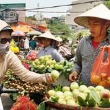 """Đào Trung Quốc """"gắn mác"""" đào Sa Pa đổ về Hà Nội"""