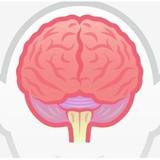 7 dấu hiệu cho thấy bạn thông minh hơn người thường