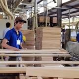 Xuất khẩu gỗ sang Trung Quốc: Nghi án gian lận hơn nửa tỷ USD