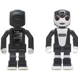 Robot có thể trở thành người bạn thân?