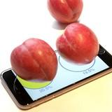 Dùng iPhone để... cân hoa quả