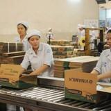 Đại gia Việt chia lại thị trường: Làm chủ thị trường 4 tỷ USD