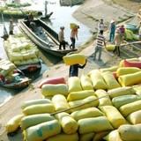 """Lợi nhuận lớn đằng sau những kênh xuất khẩu gạo """"phi chính thức"""""""