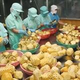 Đi tìm thương hiệu xuất khẩu cho nông sản Việt Nam
