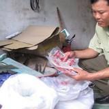 """Thị trường 24h: Biến bột ngọt Trung Quốc thành """"hàng hiệu"""""""