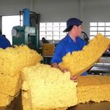 Ngành cao su: Thừa hàng nhưng vẫn phải nhập khẩu