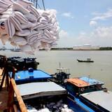 Xuất nhập khẩu năm 2015 liệu có đạt mục tiêu đề ra?