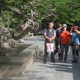 """Công ty Trung Quốc, Hàn Quốc tổ chức du lịch """"chui"""""""