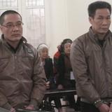 Biến đất nông nghiệp thành nhà ở, giám đốc và phó giám đốc ngồi tù