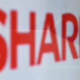 Nỗi lòng của Sharp