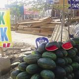 """""""Đội lốt"""" dưa hấu Sài Gòn"""