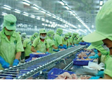"""Thị trường 24h: Việt Nam đang là đối tượng """"cảnh báo nhập khẩu"""" tại Hoa Kỳ"""