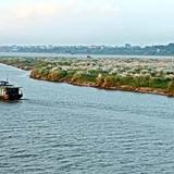 Bản chất dự án là khai thác khoáng sản sông Hồng