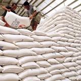 Gạo Việt ra sao nếu Thái Lan xả kho kỷ lục