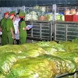 Rau cải Trung Quốc nhiễm độc thuốc sâu gấp 8 lần