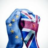 Brexit: Một lối đi, hai ngả đường