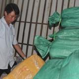 Hơn 8 tấn cá ở Hà Tĩnh nhiễm kim loại có thể gây ung thư