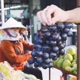 Quảng Ninh bắt giữ hơn 600kg hoa quả nhập lậu từ Trung Quốc