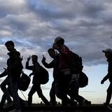 Không có người nhập cư, EU sẽ thiếu 30 triệu lao động vào năm 2030