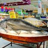 Mách nước cho doanh nghiệp thủy sản Việt muốn vào EU