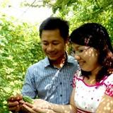 Bán đất Sài Gòn để làm trà khổ qua rừng