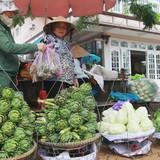 Hàng Trung Quốc nhái nông sản Đà Lạt
