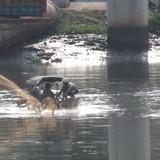 Cứu đàn cá kênh Nhiêu Lộc: Nước thải chưa xử lý còn xả, cá còn chết