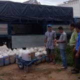 Bắt giữ hơn 3.000 lít mỡ heo thối tại Phú Quốc