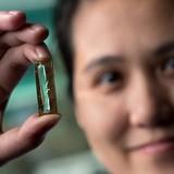 Sinh viên gốc Việt phát minh ra pin điện thoại có tuổi thọ... 400 năm
