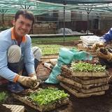 Thu nhập tiền tỷ với cây giống và hoa