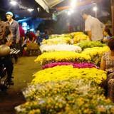 Chợ hoa lớn nhất Sài Gòn bị đề xuất dời ra ngoại thành