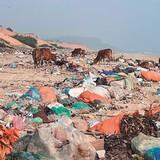 Bãi biển thành… bãi rác