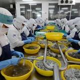 Hàng Việt bị vạ lây từ hàng Trung Quốc