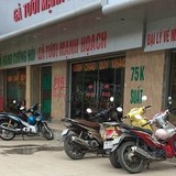 """Thị trường 24h: Cường hói kiện Cường 556 vì thương hiệu """"gà Mạnh Hoạch"""""""