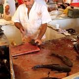 Cá tăng trọng bằng hóa chất Trung Quốc tràn ngập Brazil