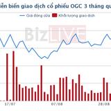 HoSE tiếp tục giữ nguyên diện kiểm soát đối với cổ phiếu của Ocean Group