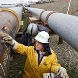 Giá dầu thoát đáy 2 tháng nhờ trữ lượng giảm mạnh bất ngờ