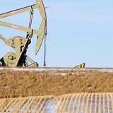 Thỏa thuận của OPEC kết tháng tăng giá 8% của dầu