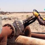 Giá dầu tăng 3% khi trữ lượng tại Mỹ sụt đột ngột